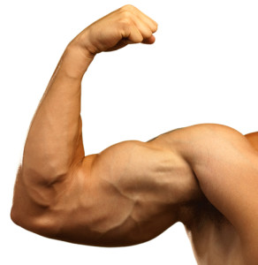 Drop Sets For Serious Muscle Growth