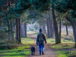 increase intensity of your walk